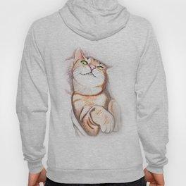 Sweet Kitty Hoody