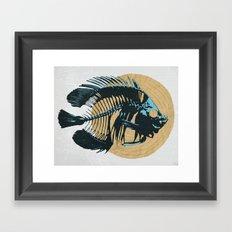 Carnivore Framed Art Print