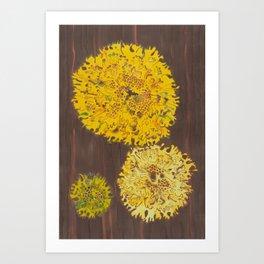 lichen in yew tree Art Print
