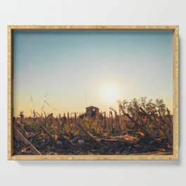 Corn field at sunset in the countryside of Lomellina Serving Tray