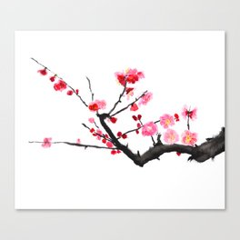 red plum flower Canvas Print