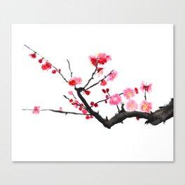 red plum flower Canvas Print