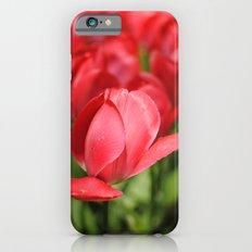 In the Sun Slim Case iPhone 6s