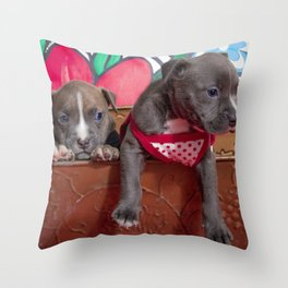 Cute Brother and Sister Pitbull Puppies with Blue Eyes Cuddling Together in a Spring Basket Throw Pillow