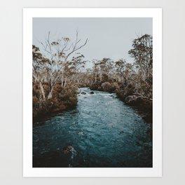 Narcissus River, The Overland Track — Tasmania Art Print