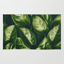 Greenery Pattern (Color) Rug