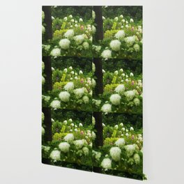 Limelight Hydrangeas in My Rubio Garden Wallpaper
