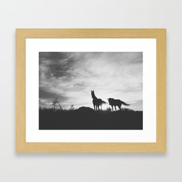 Horses on the Westcoast of South Africa Framed Art Print