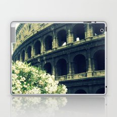 Summer in the Center Laptop & iPad Skin