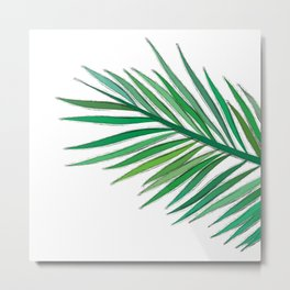 Leaves - drawing Metal Print