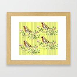Water Color Birdies Framed Art Print