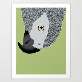 African Grey Parrot [ON MOSS GREEN] Art Print