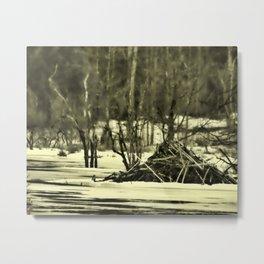 Beaver Lodge B&W Metal Print