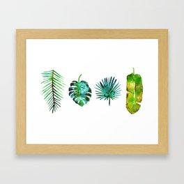 Four Tropical Leaves Framed Art Print