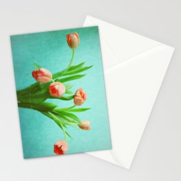 Delightful Display Stationery Cards