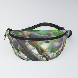 Squirrel monkey in a branch Fanny Pack