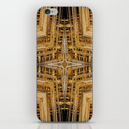 Gold and Silver iPhone Skin