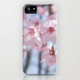 Two pink cherry blossoms & blue sky iPhone Case