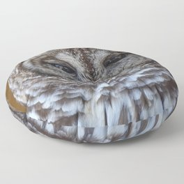 Barred owl Floor Pillow