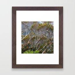 Only Natural Framed Art Print