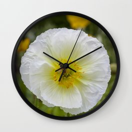 White Poppy with Bee Wall Clock