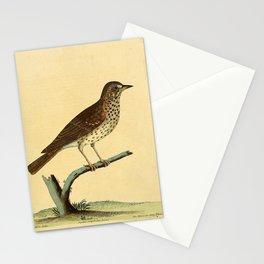 Mavis or Long Thrush5 Stationery Cards