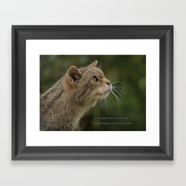 The Wisdom of Cats Framed Art Print