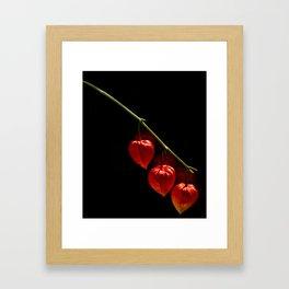 Lantern Trio Framed Art Print