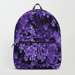 Purklin' Along..... Backpack