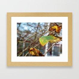 Last Autumn Leaves Framed Art Print