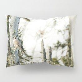 Northern Hawk Owl Pillow Sham