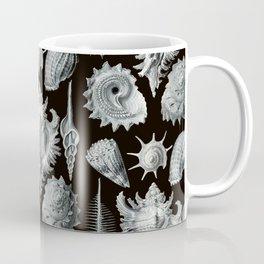 Ernst Haeckel - Prosobranchia Coffee Mug