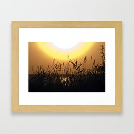 Seagrass - Summersunset - Isle Ruegen Framed Art Print