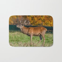 Red deer stag in autumn. Bath Mat
