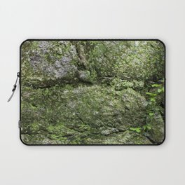 The spring wall Laptop Sleeve