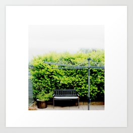Bench in Overcast Art Print