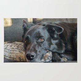 Sleepy Black Dog Resting Rug