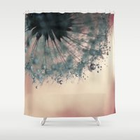 dandelion Shower Curtains featuring dandelion by Ingrid Beddoes