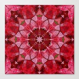 Red autumn leaves kaleidoscope - Cranberrybush Viburnum Canvas Print