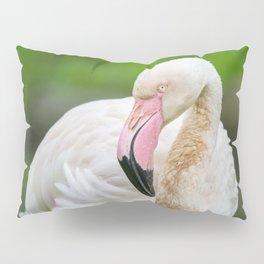 Pink Beak Pillow Sham