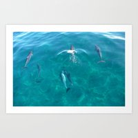 Dolphins in Time Art Print