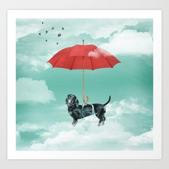 Dachshund chute Art Print