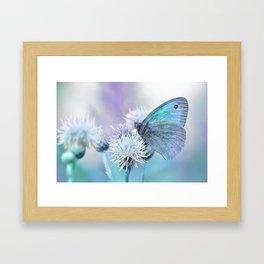 Butterfly blue 71 Framed Art Print
