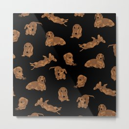 Short Haired Dachshund Pattern Metal Print