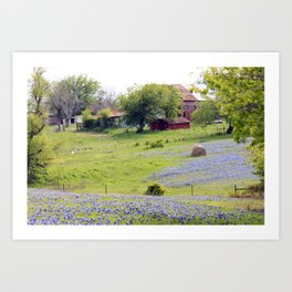 Old Red Barn and Rolling Bluebonnet Hills Art Print