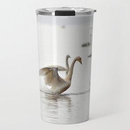 Swans. Travel Mug