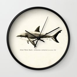 """Carcharodon carcharias II"" by Amber Marine  ~ Great White Shark Illustration, (Copyright 2015) Wall Clock"