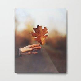 Catching a bit of Autumn Metal Print