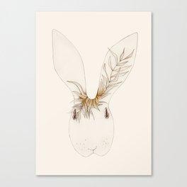 Miss Bunny Golden Brown Canvas Print