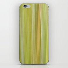 Songlines II iPhone & iPod Skin